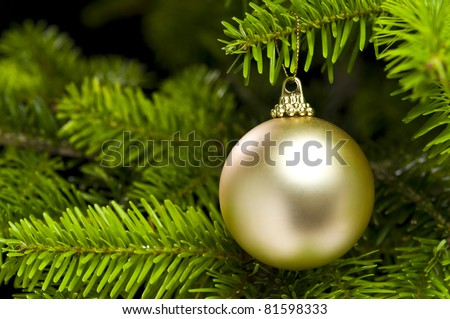 Ball shape Christmas decoration in real tree - stock photo