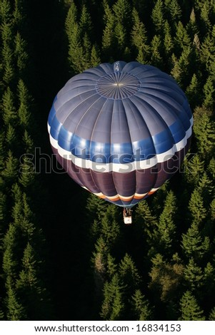 balloon in the forest - stock photo