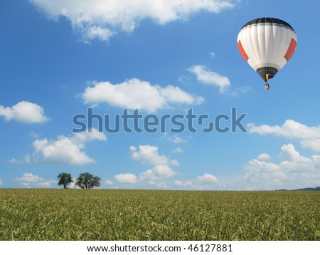 Balloon over a wheat field