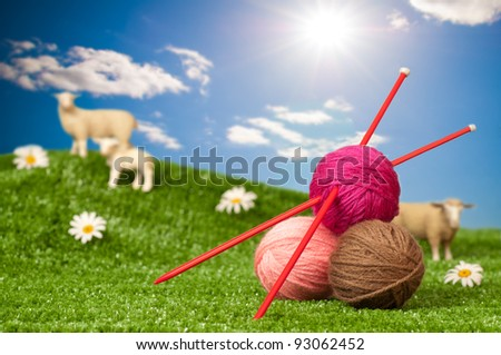 Balls of wool with knitting needles in meadow with sheep - knitting concept - stock photo