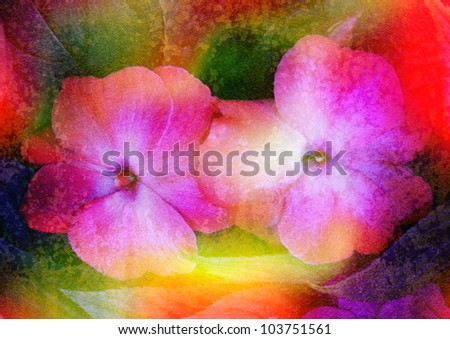 balsamine - stylized floral picture with patina texture - stock photo