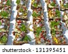 baltic herring on slices of bread  - stock photo