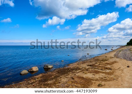 Baltic sea shore. Latvia