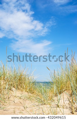 Baltic sea wild sandy beach with sedge grass against scenic cloudscape, vertical composition - stock photo