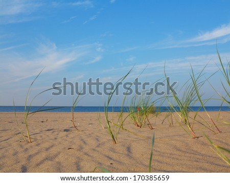 Baltic sea with grassy sand dunes in the foreground. Beach and water.