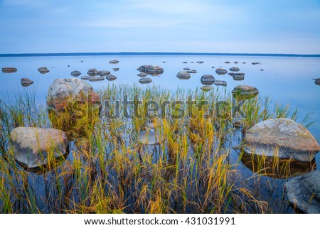 Baltic seaside after sunset with stones and grass in water, long exposure - stock photo