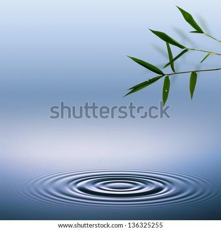 Bamboo. Abstract environmental backgrounds - stock photo