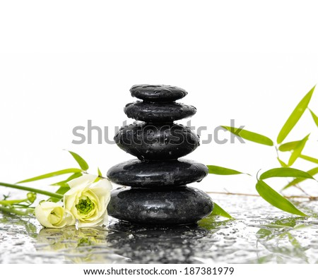 Bamboo and stones with white ranunculus flower - stock photo