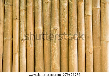 bamboo background and texture - stock photo