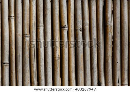 bamboo background texture - stock photo