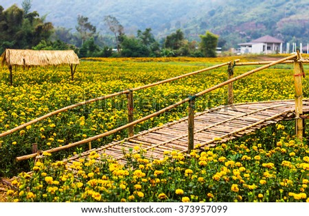 Bamboo bridge garden marigolds blooming with cottage houses and mountains as a backdrop. - stock photo