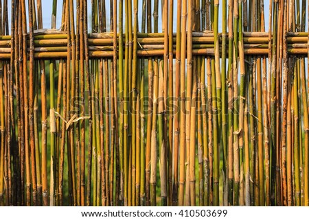 Bamboo fence tropical style.  - stock photo