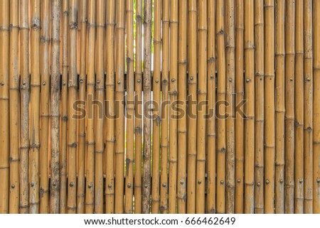bamboo fence wall texture pattern for background.