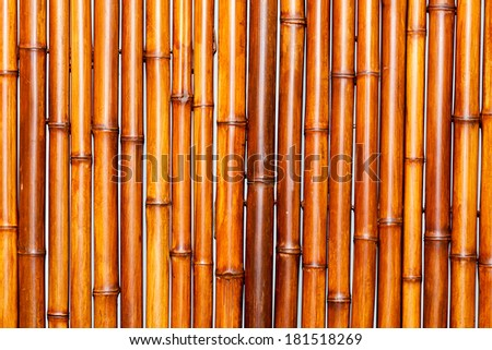 bamboo fence wood to use as texture or background - stock photo