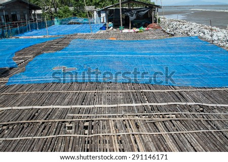 bamboo floor in the place for making Shrimp paste under the sun, Thail  agriculture ,