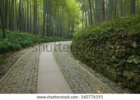 Bamboo forest trail in Hangzhou, China - stock photo