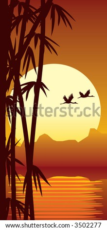 Bamboo forest, water and sunset - stock photo