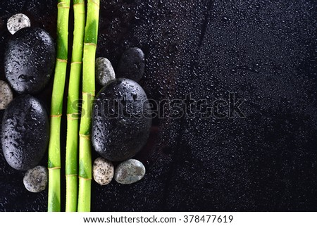 Bamboo grove with black zen stone on the black background. Spa concept - stock photo