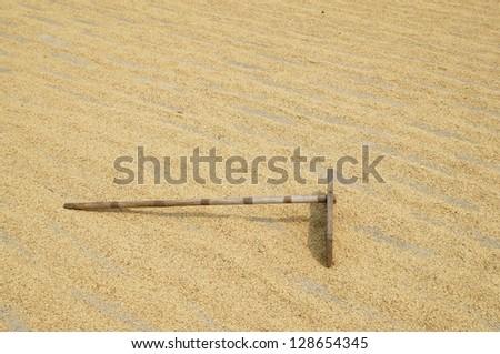 bamboo harrow on rice grain - stock photo