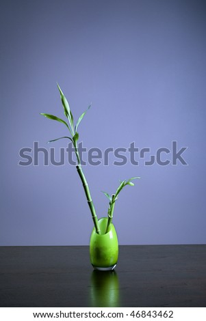 Bamboo in a opaque green glass vase sitting on a table or desk. Vertical shot. - stock photo