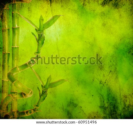 bamboo isolated on green background