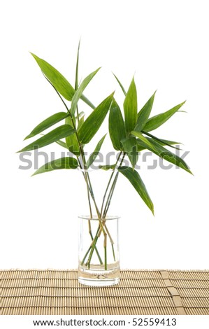 Bamboo leaf in vase on bamboo mat - stock photo