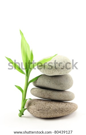 Bamboo leafs and zen stones isolated on white - stock photo