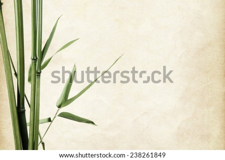 bamboo leaves border on vintage old paper background with copy space - stock photo