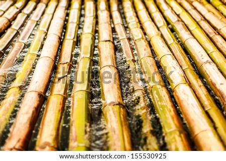 bamboo raft in water