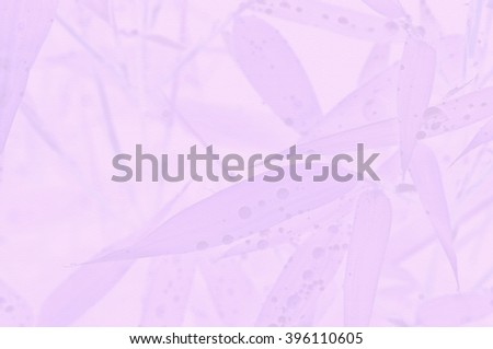bamboo stationary - stock photo