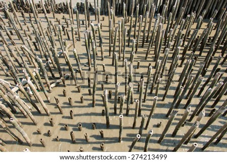 Bamboo stick for slow waves hit the coast, the Gulf of Thailand - stock photo