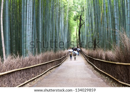 Bamboo Street, Kyoto, Japan - stock photo