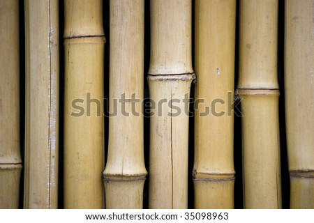 bamboo surface / abstract grungy background