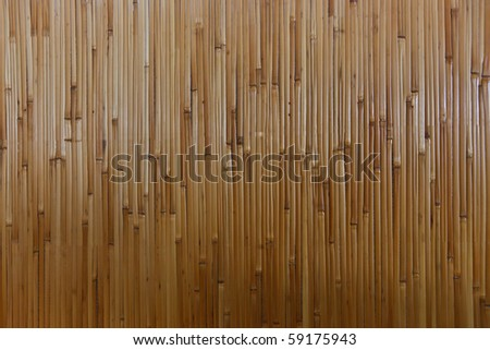 Bamboo Texture, Background