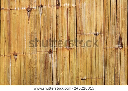 Bamboo wall background.