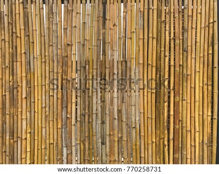 Bamboo wall for background texture