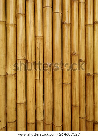 bamboo wall texture and  background - stock photo