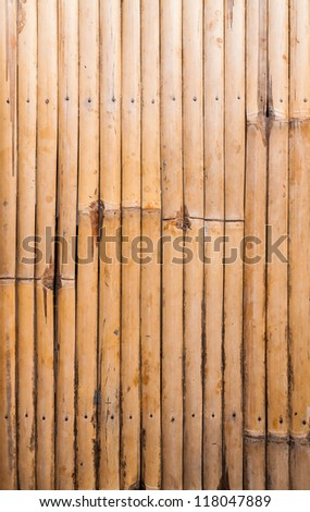 Bamboo wood striped pattern in row background texture
