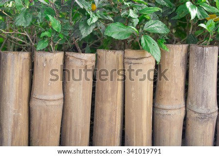 bamboo wooden fence with green leaf in  garden background