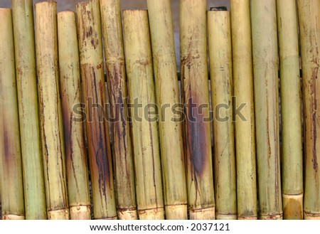 Bamboos placed near charcoal as part of preparation for Malaysian special dish of lemang. - stock photo
