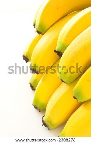 banana bunch - stock photo