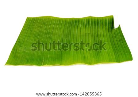 banana leaf isolated on white background - stock photo