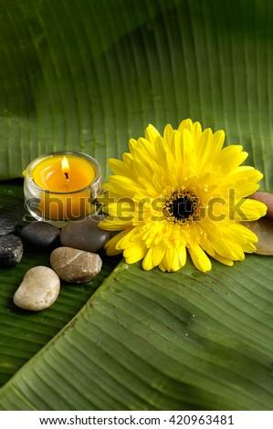 Banana leaf texture and  spa setting - stock photo
