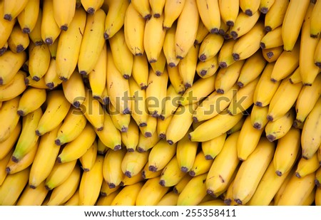 Bananas background texture - stock photo