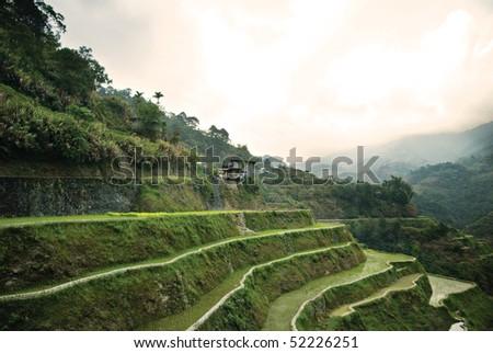 Banaue Rice Terraces - stock photo