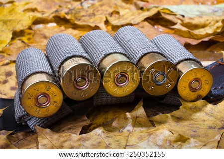 bandoleer on the autumn leaves - stock photo