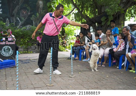 BANGKOK -  AUGUST 2 2014, Dusit Sound Dog Show  in Dusit Zoo  or Kaow-din Zoo ,More Dog have a special talent show for free,for  people who come to visit Dusit Zoo. AUGUST 2 2014 - BANGKOK THAILAND - stock photo