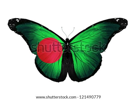 Bangladesh flag butterfly flying, isolated on white background - stock photo