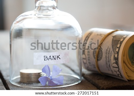 Bank Concept. Gold coins on a table under a glass cover, dollars and flower, soft focus.