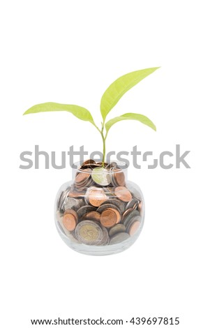 bank,piggy bank,Money,Coins,Concept,Tree, Sprout growing on glass piggy bank  isolate on white with clipping path in saving money concept - stock photo